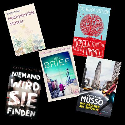 Gelesene Bücher Juni 2017