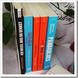 Bücherschrank Nahaufnahme